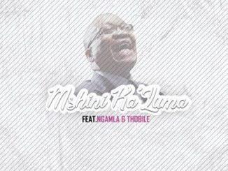 Music Fellas Mshini Ka'Zuma Ft. Ngamla & Thobile Mp3 Download