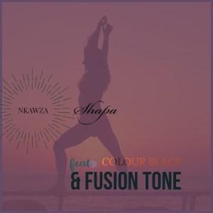 Nkawza Shapa Ft. Colour Black & Fusion Tone Mp3 Download