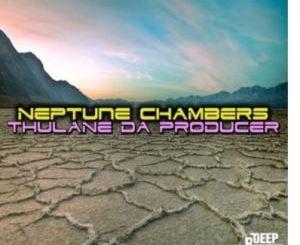 Thulane Da Producer Neptune Chambers Mp3 Download