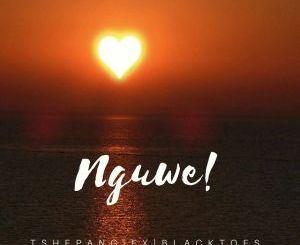 Tshepang & Black Toes SA Ft. Xwelking Nguwe Mp3 Download