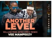 Vee Mampeezy Another Level (William Risk's Afro Vibez Remix) Ft. Dj Sumbody Mp3 Download
