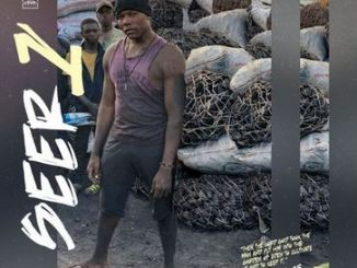 Willz Mr Nyopole Seer 1 Mp3 Download