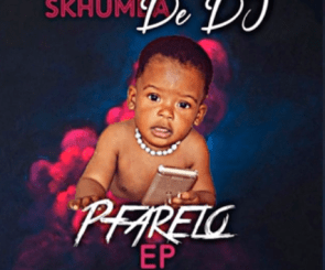 Skhumba De Dj Mdali Wami Mp3 Download