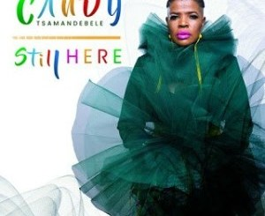 Candy Tsamandebele Tsonga Boy Mp3 Download