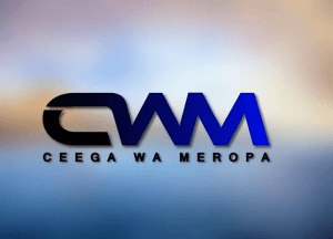 Ceega Another Girl Mp3 Download