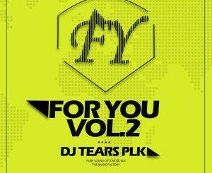 DJ Tears PLK For You Vol.2 Zip Download