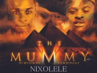 DOWNLOAD Dj Muzik SA & Gawdingaz Nixolele Mp3
