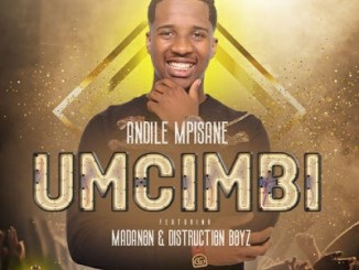 Andile Mpisane Umcimbi ft. Madanon & Distruction Boyz Video Download