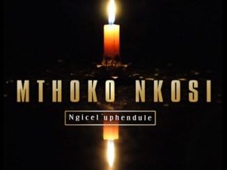 Mthoko Nkosi Ngicel'uphendule Video Download