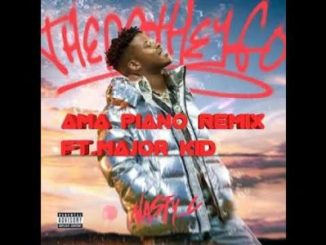 Nasty C Ft. Major Kid There They Go ( Ama-Piano Remix) Mp3 Download