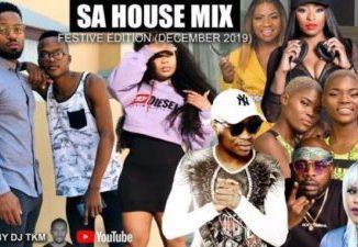 South African House Music Mix 2020 ft. Master KG, TNS, DJ Zinhle, DJ Maphorisa Mixed by DJ TKM Mp3 Download