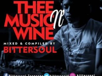 DOWNLOAD BitterSoul Thee Music N' Wine Vol.13 Mix Mp3 Fakaza