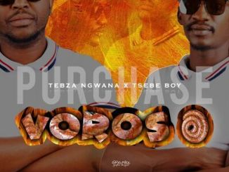 DOWNLOAD Tsebe Boy & Tebza Ngwana Voroso Ft. Le Ray x White Nigh Mp3