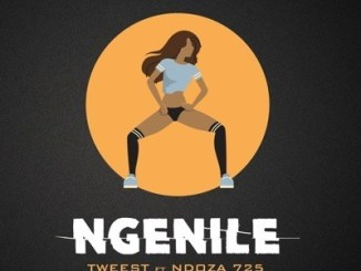 Tweest Ngenile Mp3 Fakaza Download