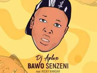 DJ Aplex SA Bawo Senzeni Mp3 Download Fakaza