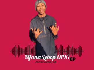 DOWNLOAD Mc'SkinZz_SA Mfana Lebop 0190 EP Zip Fakaza