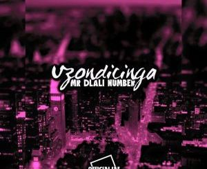 DOWNLOAD Mr Dlali Number Uzondicinga Mp3 Fakaza