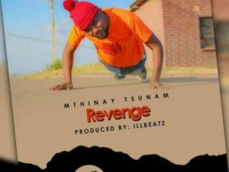 Fakaza Music Download Mthinay Tsunam Revenge Mp3