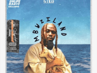 Fakaza Music Download Stilo Magolide Mbuzi In The Water Mp3