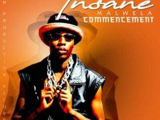 Fakaza Music Download Insane Malwela Mashonisa Mp3