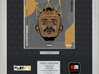 Kabza De Small's I'm The King of Piano Hits Double Platinum