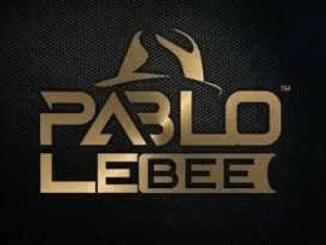 Fakaza Music Download Pablo Le Bee Trip To Mpumalanga Mp3
