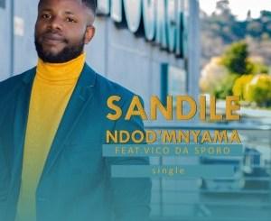 Fakaza Music Download Sandile Ndod'mnyama Mp3