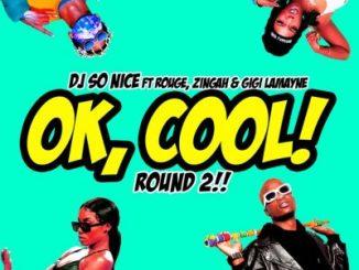 DJ So Nice Ok, Cool! Round 2! Mp3 Download Fakaza