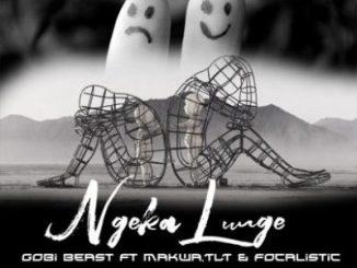 Gobi Beast Ngeka Lunge Mp3 Download Fakaza