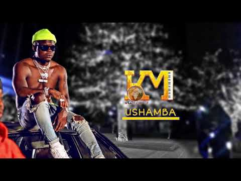 Harmonize Ushamba Mp3 download