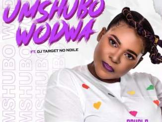 Sdudla Somdantso Umshubo Wodwa Mp3 Download Fakaza Music