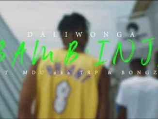 Daliwonga Bamb'inja Video Fakaza Music Download