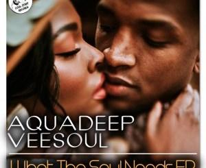 Veesoul, Aquadeep Whatever You Like Mp3 Fakaza Music Download