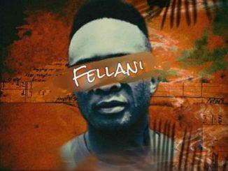 Fellani Liyashona ilanga Ft. PuleNP Rsa Mp3 Download Fakaza
