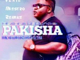 Dladla Mshunqisi – Pakisha (Plate Maestro Remake) mp3 download