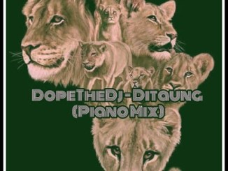 DopeTheDj – Ditaung (Piano Mix) mp3 download