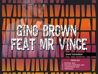 Gino Brown – Shay'iNumber (Wilson Kentura Killer Mix) Ft. Mr. Vince mp3 download