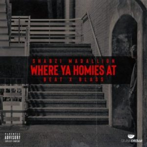ShabZi Madallion – Where Ya Homies At mp3 download