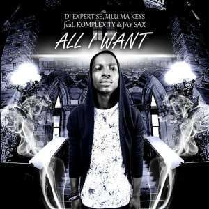 Dj Expertise – All I Want Ft. Mlu Ma Keys, Komplexity and Jay Sax. mp3 download