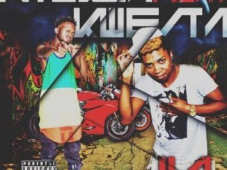 DOWNLOAD Ntukza Ft. Kwesta Ila Mp3