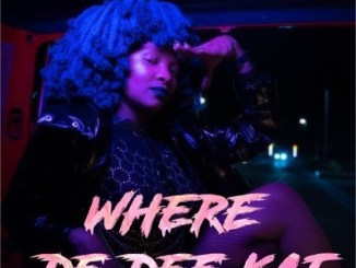 DOWNLOAD Moonchild Sanelly Where De Dee Kat Mp3