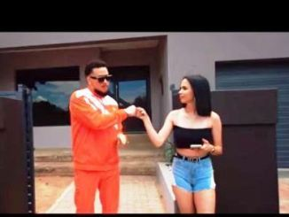 AKA Ft. Riky Rick, DJ Tira – F.R.E.E Video Download