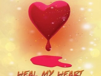 DJ Ace – Heal My Heart mp3 download