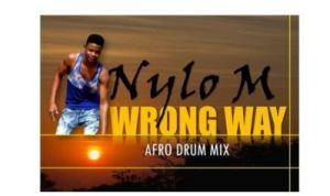 Nylo M – Wrong Way (Afro Drum) mp3 download