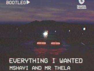 DOWNLOAD Mr Thela & Mshayi Everything I Wanted (Bootleg) Mp3