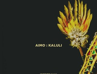 DOWNLOAD Aimo Kaluli (Original Mix) Mp3