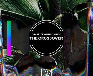 DOWNLOAD D-Malice & Buddynice The Crossover (Original Mix) Mp3