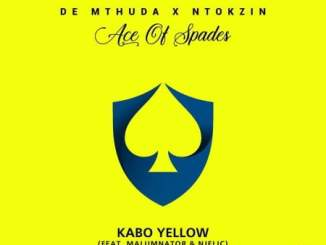 DOWNLOAD De Mthuda & Ntokzin Kabo Yellow Mp3 Ft. Malumnator & Njelic