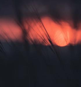 Download Mp3 Agoria – Wish Me Luck (Mozaïk Remix)