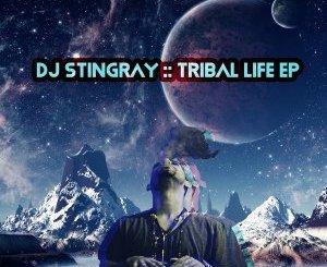DJ Stingray – Sabroso mp3 download